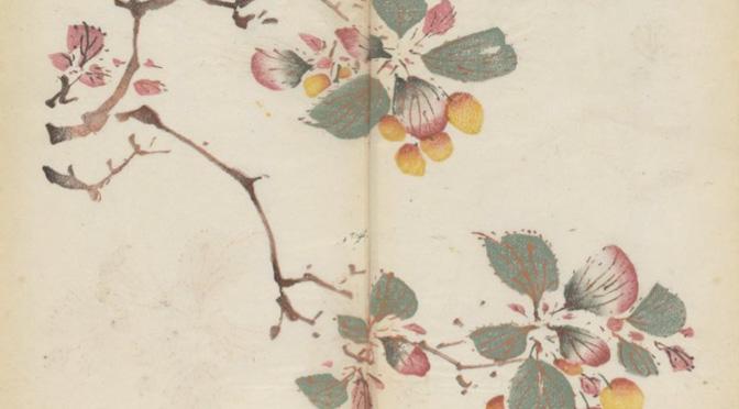 Oudste in kleur gedrukte boek on line